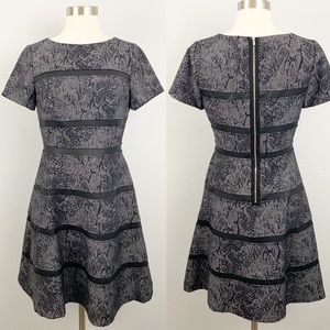 Ivy Blu snakeskin print fit and flare dress